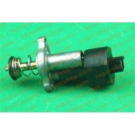 Pulsador electrico Calderas/ calentador COINTRA COI 10L,5L MODERNO ORIGn